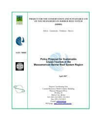 Policy Proposal for Sustainable Cruise Tourism in the MBRS Region ...