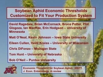 Soybean Aphid Economic Thresholds Customized to Fit Your ...