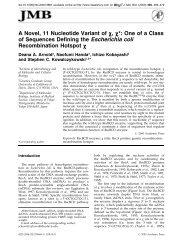 A Novel, 11 Nucleotide Variant of - ResearchGate