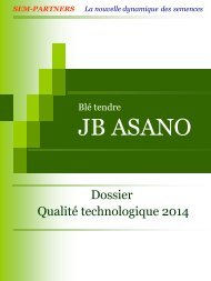 Blé tendre JB ASANO - Sem-Partners