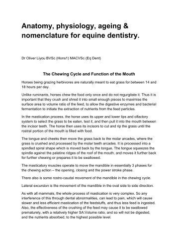 Equine Dentistry - Avondale Veterinary Group