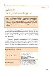 Section 5: Nursery and plant hygiene - World Agroforestry Centre