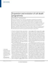 Expansion and evolution of cell death programmes