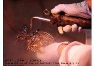 SPORT LISBOA E BENFICA - Museum Advisors Europe