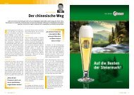 download pdf - Top of Styria