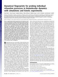 Dynamical fingerprints for probing individual relaxation processes in ...