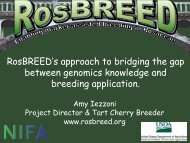 RosBREED's approach to bridging the gap between genomics ...