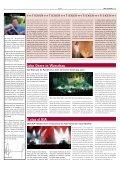 true colours 02 - Satis & Fy - Seite 2