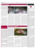 true colours 02 - Satis & Fy - Seite 3