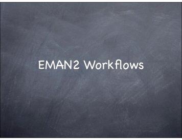 EMAN2 Workflows