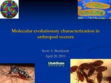 Molecular evolutionary characterization in arthropod vectors