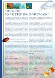 Introduction to the Deep Sea Environment :Layout 1 - Biblon