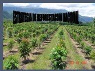 Presentación Estrategia de Reforestación - ICF