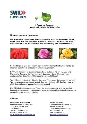 30. Juli 2013 - Rosen - gesunde Königinnen - SWR Fernsehen