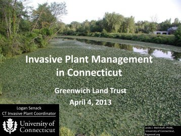 Presentation: Invasive Plant Management in Connecticut