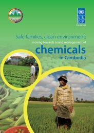 chemicals - United Nations in Cambodia