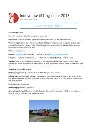 Indbydelse til Ungsenior 2013
