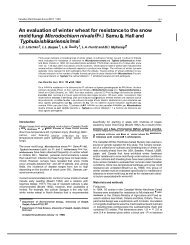 An evaluation of winter wheat for resistance to the snow mold fungi ...