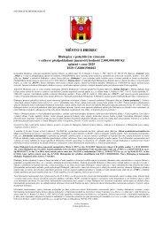 Informační memorandum.pdf - Statutární město Liberec