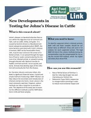 New Developments in Testing for Johne's Disease in Cattle