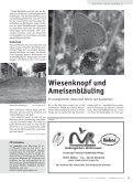 Adresse - Grünstift - Seite 4