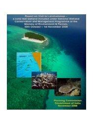 Report on Lakshadweep Wetlands/coral reefs. - of Planning ...