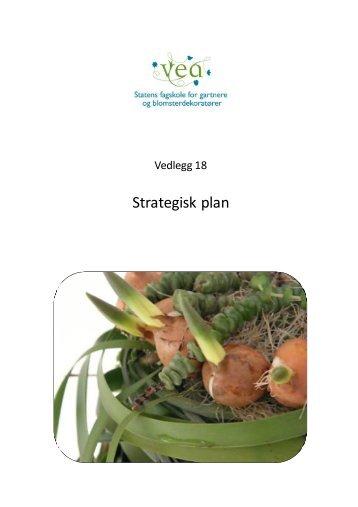 Strategisk plan - Vea