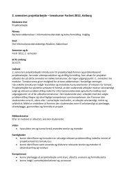 2. semesters projektarbejde – temakurser Foråret 2012, Aalborg - IVA