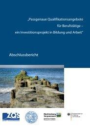 Abschlussbericht zum Projekt - Wissenschaftliche Weiterbildung ...