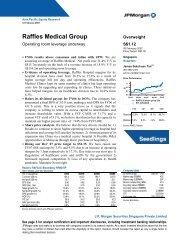 Raffles Medical Group: Summary of financials