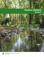 section ii - financial summaries - Forsyth County Government