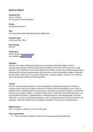 Fagets / modulets titel - IVA