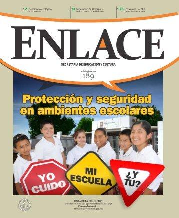 Enlace N° 189 Protección y seguridad en ambientes escolares
