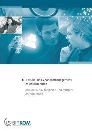 IT-Risiko - Deutschland sicher im Netz