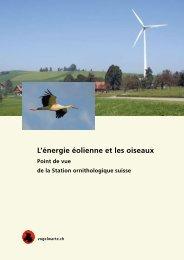 L'énergie éolienne et les oiseaux