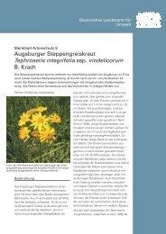 Merkblatt Artenschutz 9 - Botanischer Informationsknoten Bayern