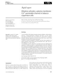 Ethylene activates a plasma membrane Ca2+-permeable channel in ...
