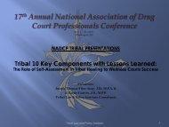 E-19 - National Drug Court Institute