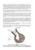 Ch 03 SM10c.pdf - Diving Medicine for SCUBA Divers - Page 3