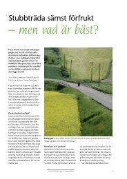 Stubbträda sämst förfrukt– men vad är bäst? - Svensk Raps