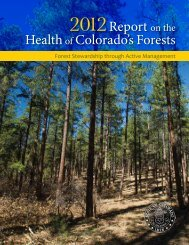 Report on the Health of Colorado's Forests - Forest Health Monitoring
