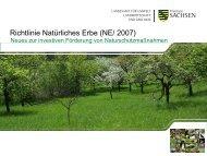 NE/ 2007 - Sächsisches Staatsministerium für Umwelt und ...