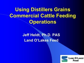 Using Distillers Grains Commercial Cattle Feeding Operations