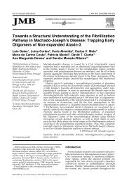 Towards a Structural Understanding of the Fibrillization Pathway in ...