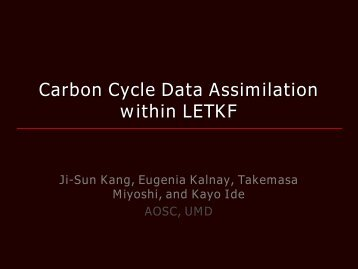 Carbon Cycle Data Assimilation within LETKF - Weather-Chaos Group