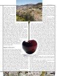 Ciliegia, a tutto tondo - L'Informatore Agrario - Page 2