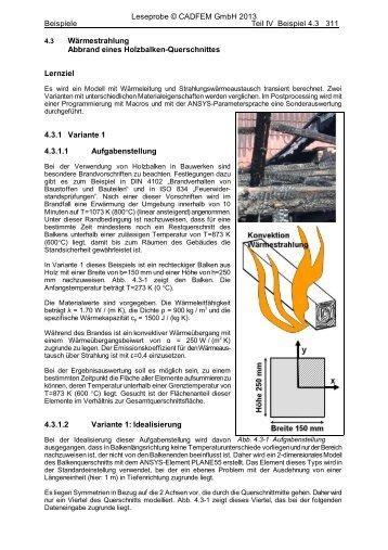 beispiel 43 wrmestrahlung abbrand eines holzbalken esocaet - Warmestrahlung Beispiele