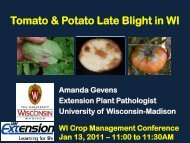 Tomato & Potato Late Blight in WI - University of Wisconsin-Madison