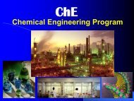 Chemical Engineering Program