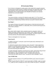 3E Curriculum Policy - Sutton Grammar School